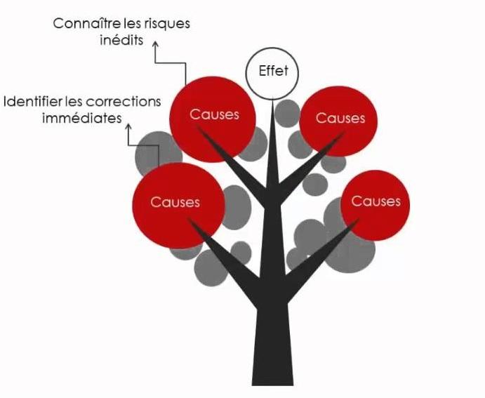 Formation A La Methode De L Arbre Des Causes